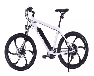 250w aluminum integrated wheel 21 speed mountain electric bike