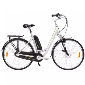 Nexus 3 gear city electric bike for lady