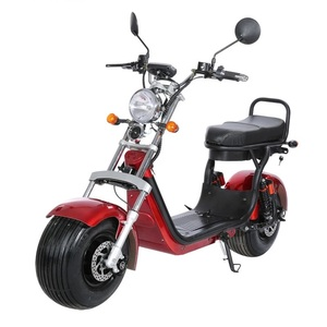 18 Inch Fat Trie  Suspension1500w Citycoco Electric Scooter