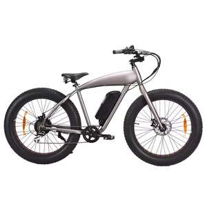 Halley 26 inch snow beach electric bike fat tire